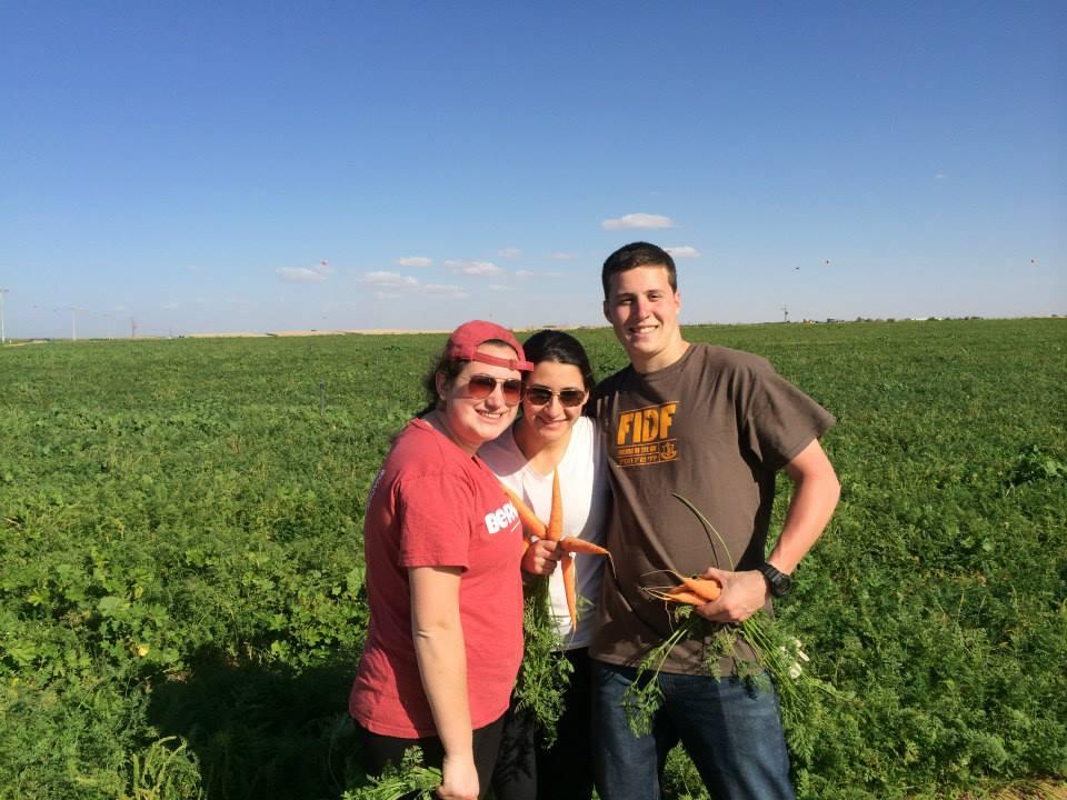 Muhlenberg students volunteered on JNF's Alternative Spring Break trip to Israel.