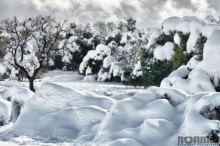 snow-in-golan-heights-israel