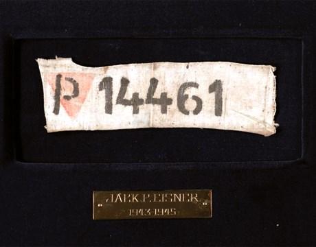 P14461 Insignia - 4