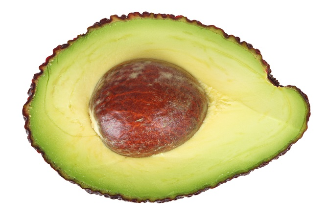 avocado_188851_small_free download