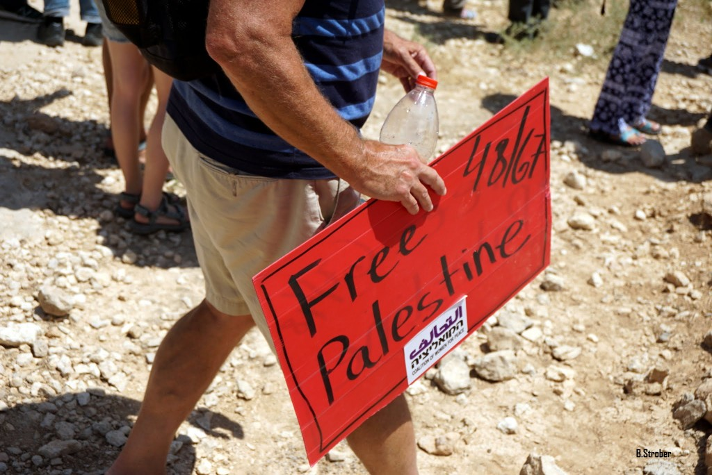 A sign held at a protest saying free Palestine referring to both the 1948 war of independence/nakba and the Six Day War of 1967