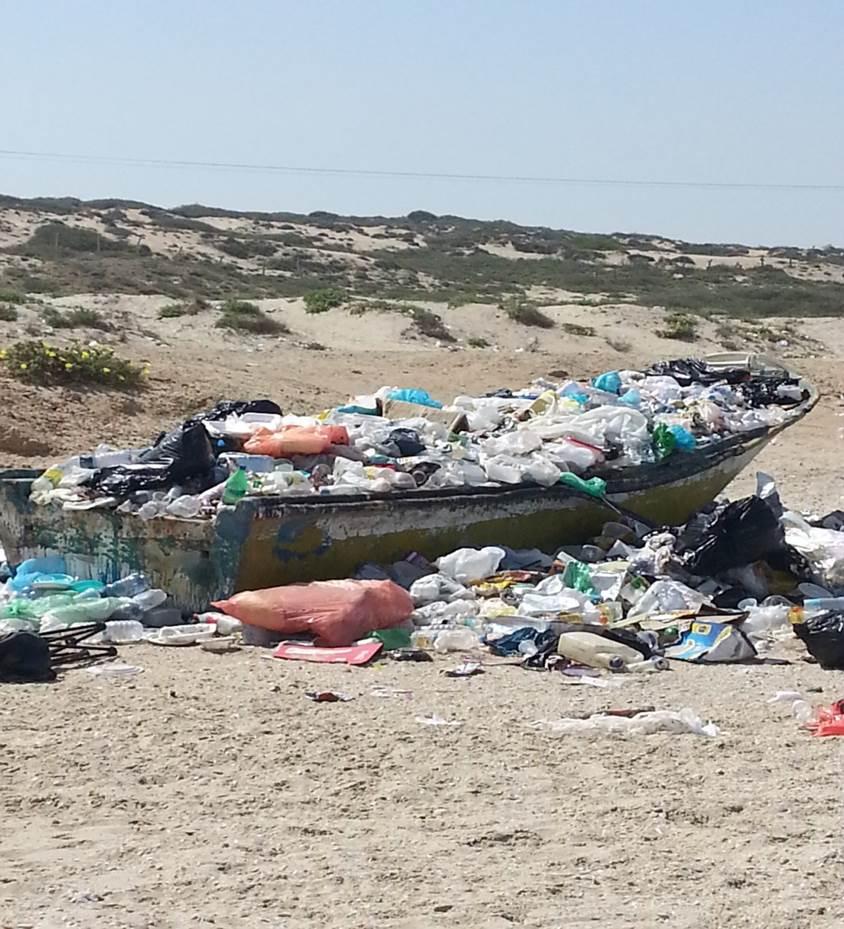 Dumpster at Palmachim