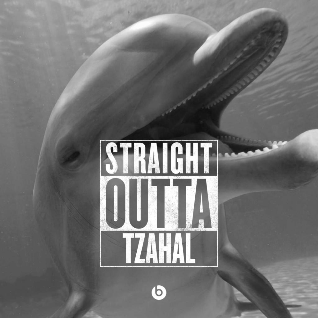 IDF dolphin