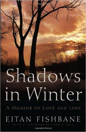 Shadows in Winter cover