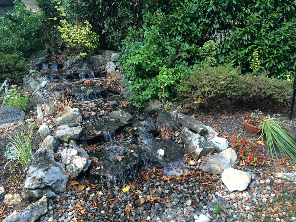 Waterfall in the Healing Garden at Good Shepherd Hospice