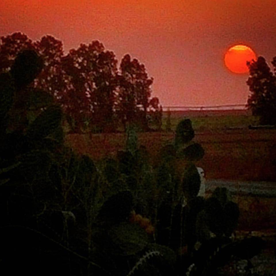 The setting sun sinking into the horizon over Gaza.
