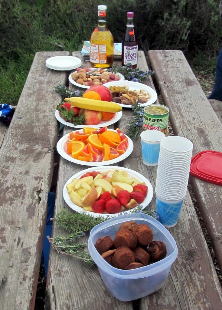 The Tu B'Shvat seder table (Edmon J. Rodman)