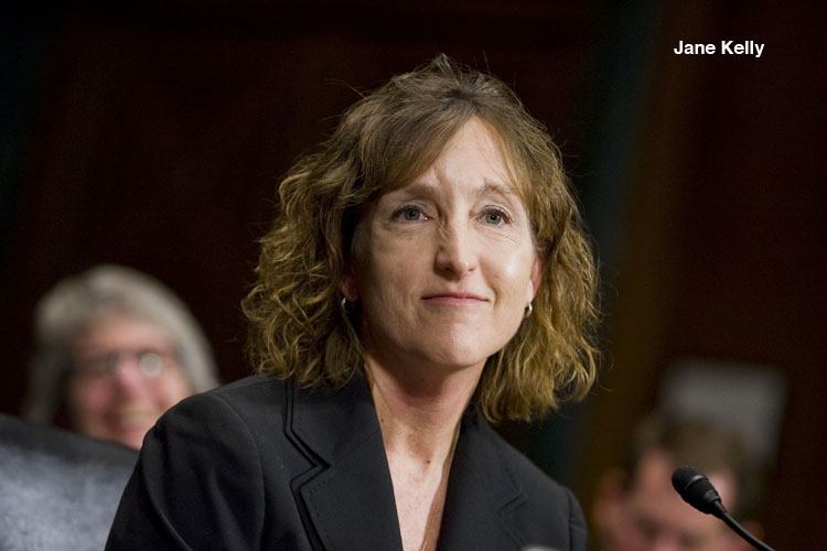 Jane Kelly, during her confirmation hearing before the Senate Judiciary Committee, to be United States Circuit Judge for the Eighth Circuit. February 27, 2013. Photo by Diego M. Radzinschi/THE NATIONAL LAW JOURNAL.