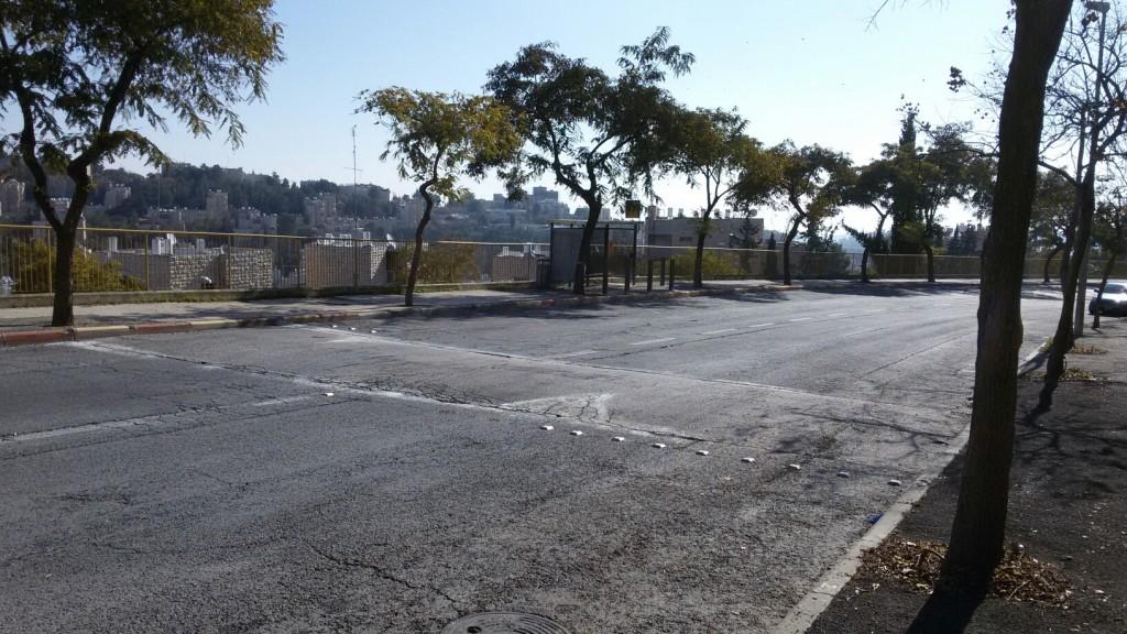 raziel bump and bus stop (2)