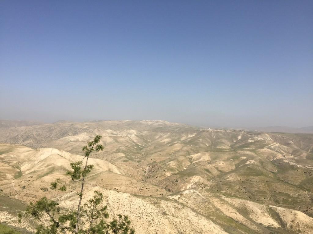 The Judaean Hills. (Amanda Borschel-Dan/The Times of Israel)