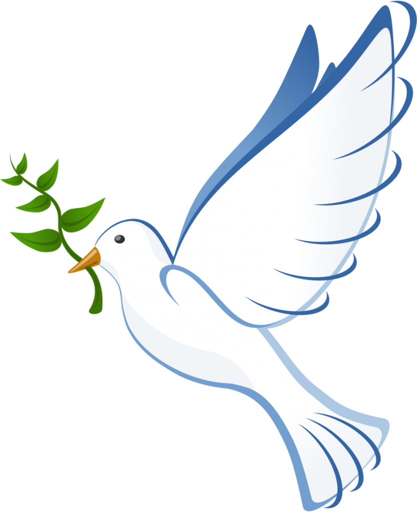 Dove in flight carrying olive branch