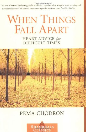 when-things-fall-apart-cover