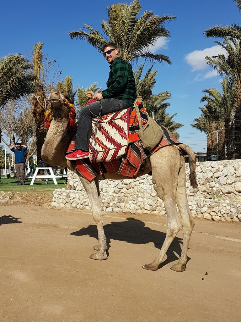 Lavarnway on a camel