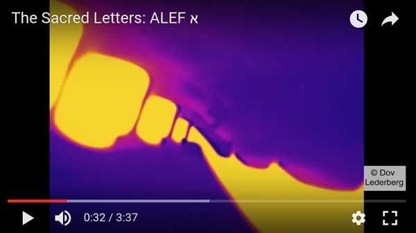 alefweb (1)