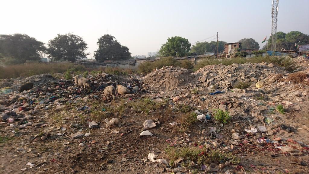 Kalwa Slum