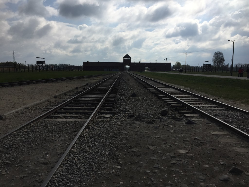 Standing on the infamous tracks of Auschwitz-Birkenau - which brought hundreds of thousands of Jews to their deaths.
