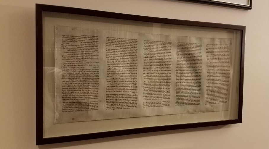 Fragment of Polish Torah scroll rescued from gutter