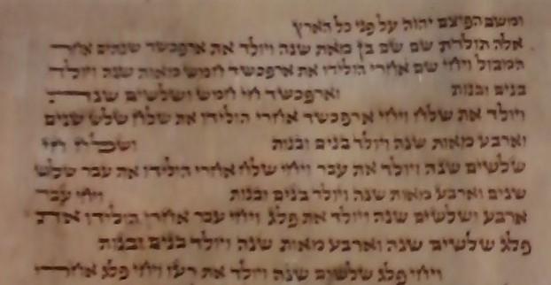 Close up of fragment of Polish Torah scroll