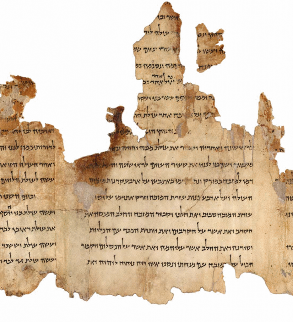 image of fragment from Temple Scroll