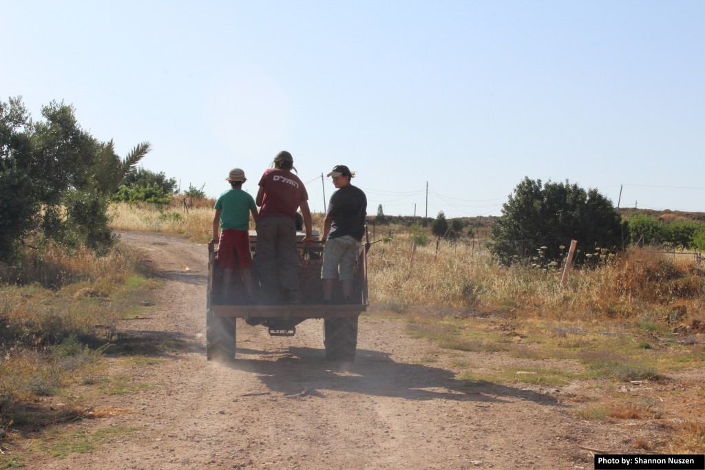 Amona youth cruising the hilltop in a search for usable materials for the fort they will build again.