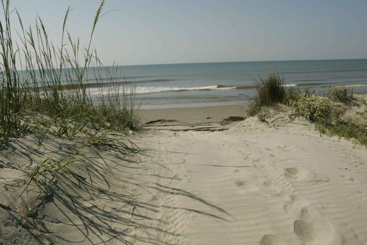 photo of sand dune and ocean