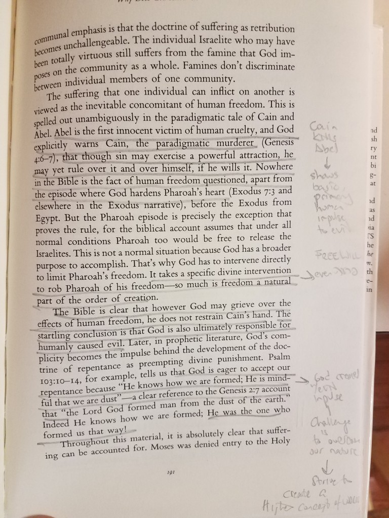 photo showing notes in margins of Doing Jewish Theology