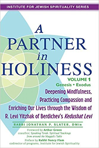 A Partner in Holiness Vol 1 cover image