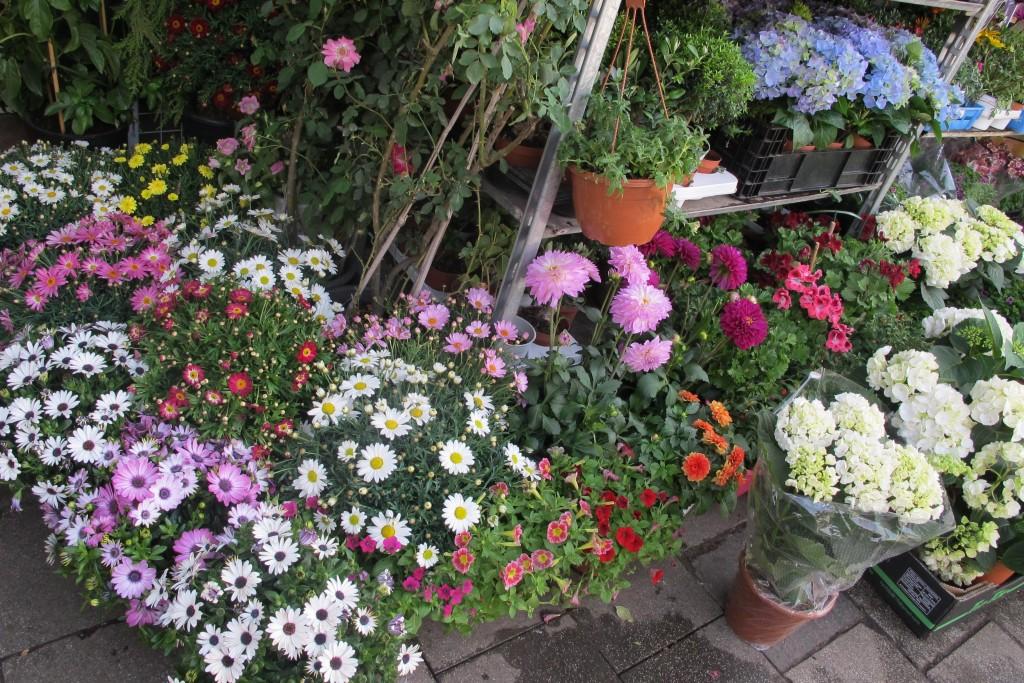 Florists' Wares