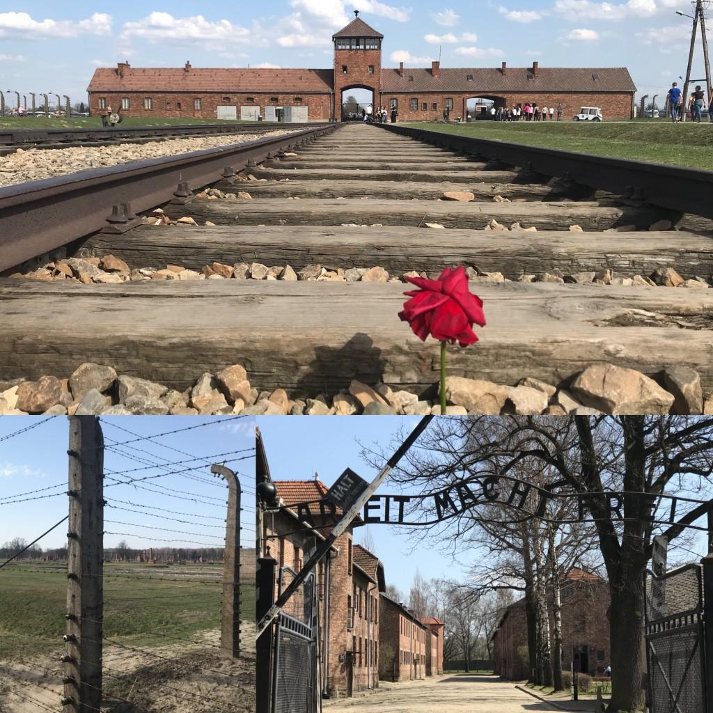 pic of Auschwitz