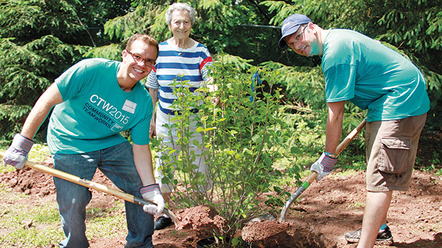 Volunteers Boris Davidson, left, and Eugene Eydlin, right, get a hand from Miriam Apartments II tenant Marion Lasofsky who holds the plant steady as they dig the hole for the ornamental shrub on the grounds surrounding the building. Courtesy DOMC