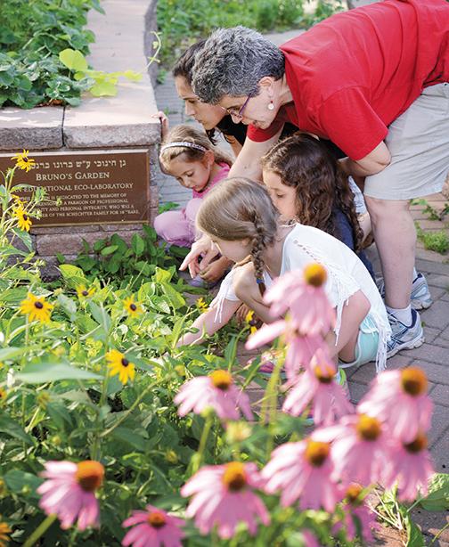 Schechter's resident horticulturalist, Deborah Bejar, works with students Eliana Apter, Maya Apter, Liana Rabinowitz, and parent Rachel Wainer Apter. Photo by Veronica Yankowski