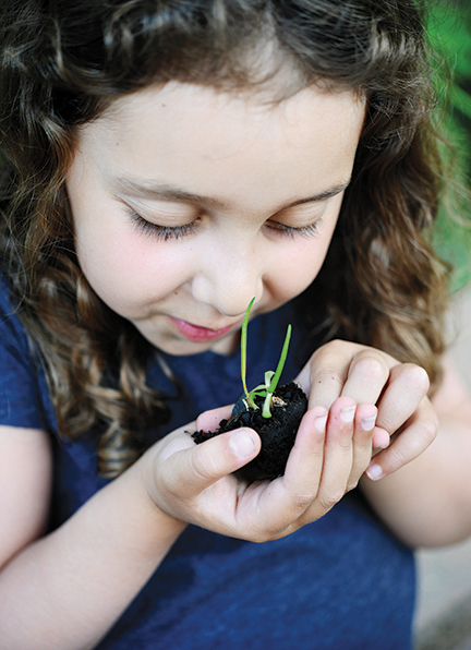 Eliana Apter looks at a small plant from the Schechter garden. Photo by Veronica Yankowski