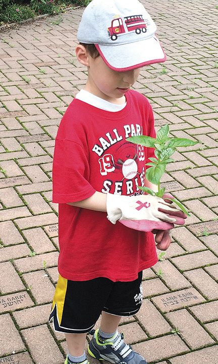 Eitan Elias looks at a plant he holds in an adult-sized gardening glove.