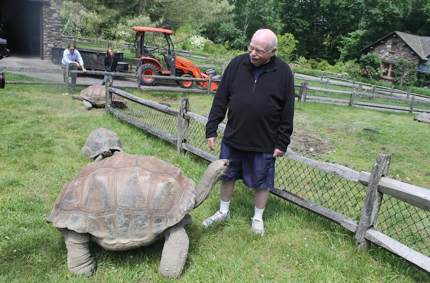 Take A Peek Into Michael Steinhardt S Private Zoo Jewish Week